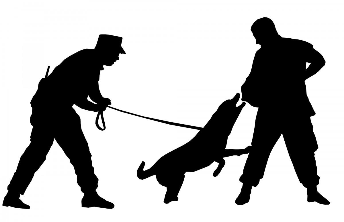 Les agents cynophiles de sécurité ou maîtres-chiens